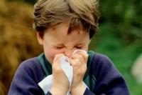 Лучший очиститель воздуха для аллергика